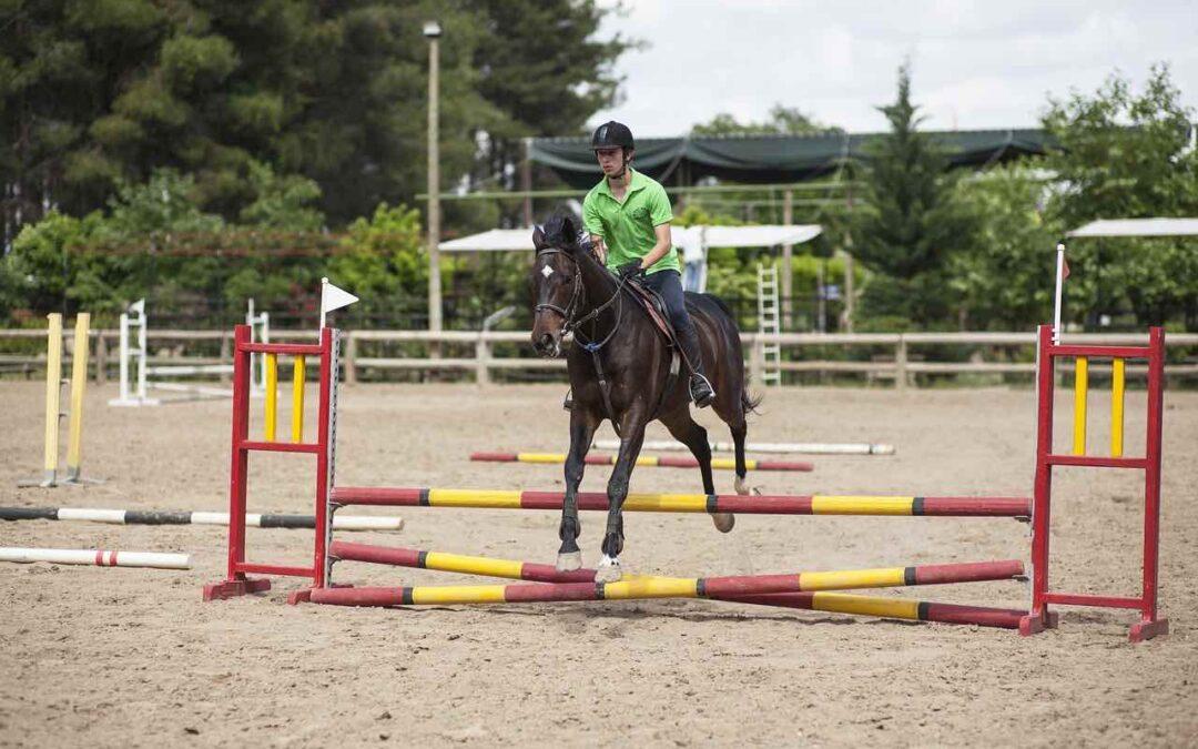 Konditionsträning för hästar